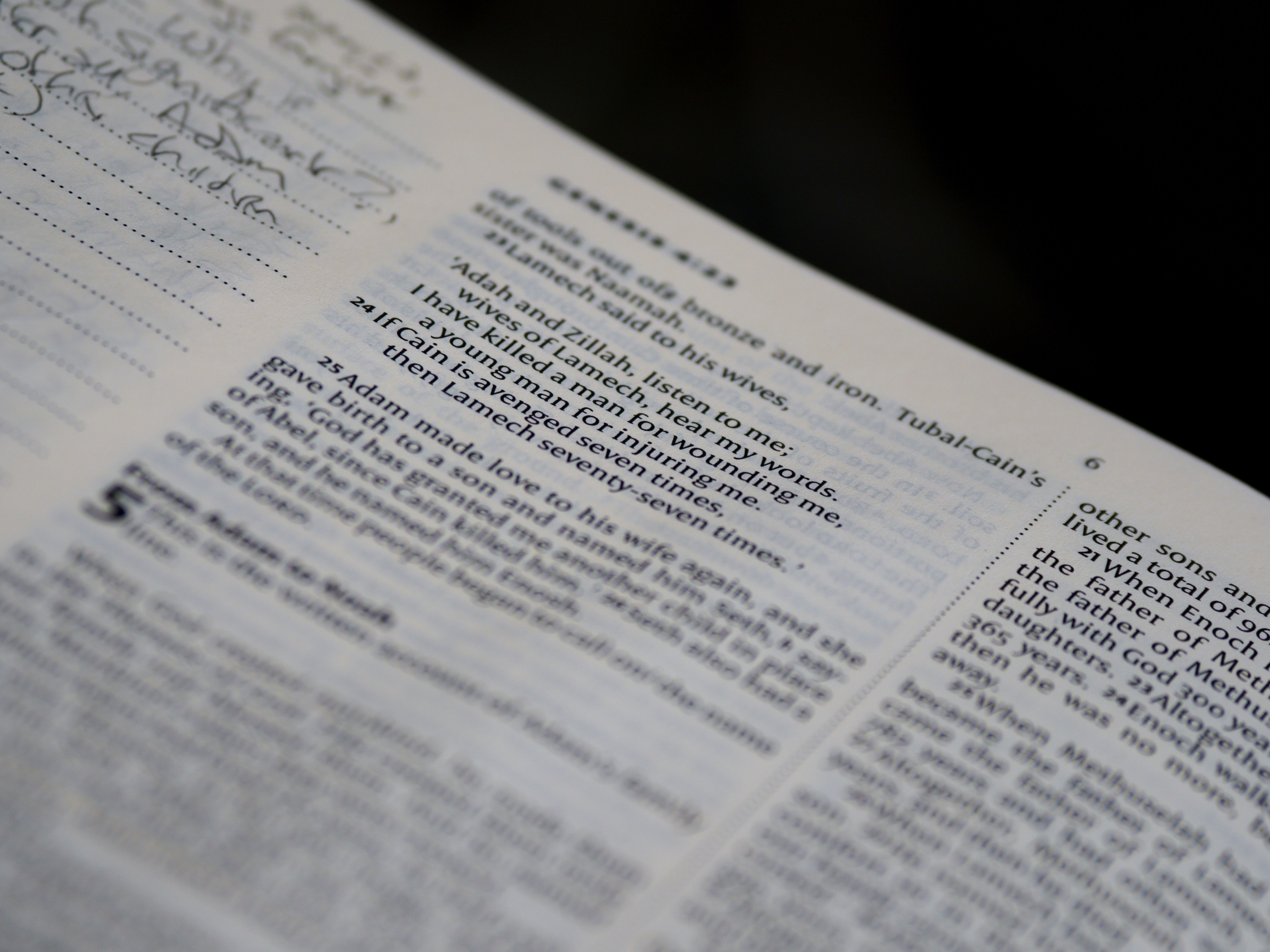 How it All Began: Studies in Genesis